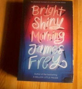 books keep me sane - bright shiny morning james frey (590x640)